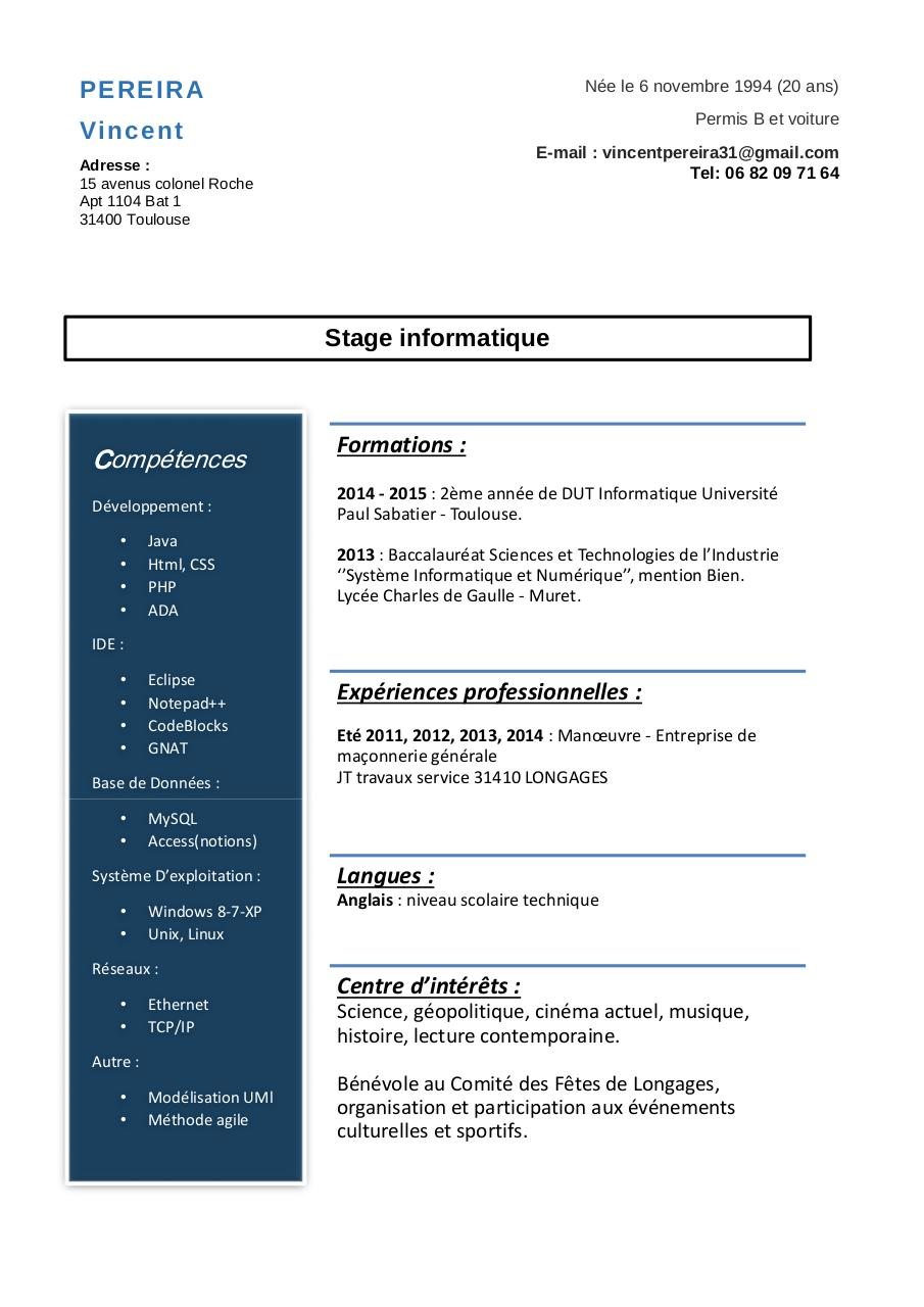 epub  cv dut informatique