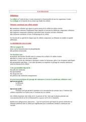 Fichier PDF la cellule