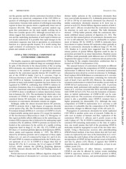 Eukaryotic Cell-2011-Roy-1384-95.pdf - page 5/12