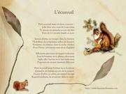 l ecureuil poesie