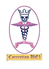 correction ue5