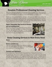 houston professional cleaning services