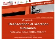 reabsorption et secretion