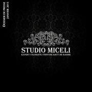 studio miceli
