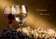 carte des vins domaine