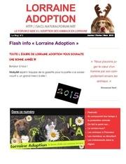 gazette lorraine adoption 2