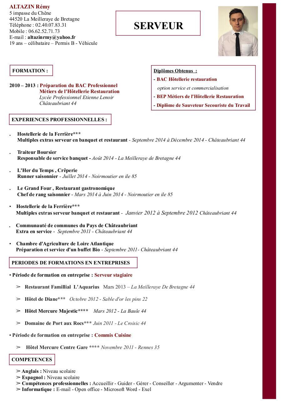 cv remy 2015 pdf