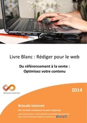 livre blanc edito referencement brioude internet