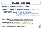 affichage stage hiver 1415