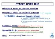 Fichier PDF affichage stage hiver 1415