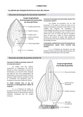 Fichier PDF correction dissections