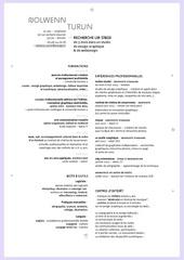 Fichier PDF cv nturlin