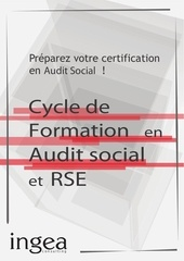 ingea consulting cycle audit social rse 2015