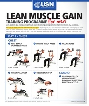 lean muscle gain training programme for men 2 1