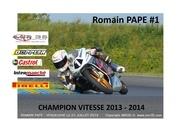 romain pape press book 2015