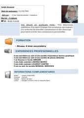 Fichier PDF cv saida 3