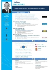 Fichier PDF julien das neves cv eng