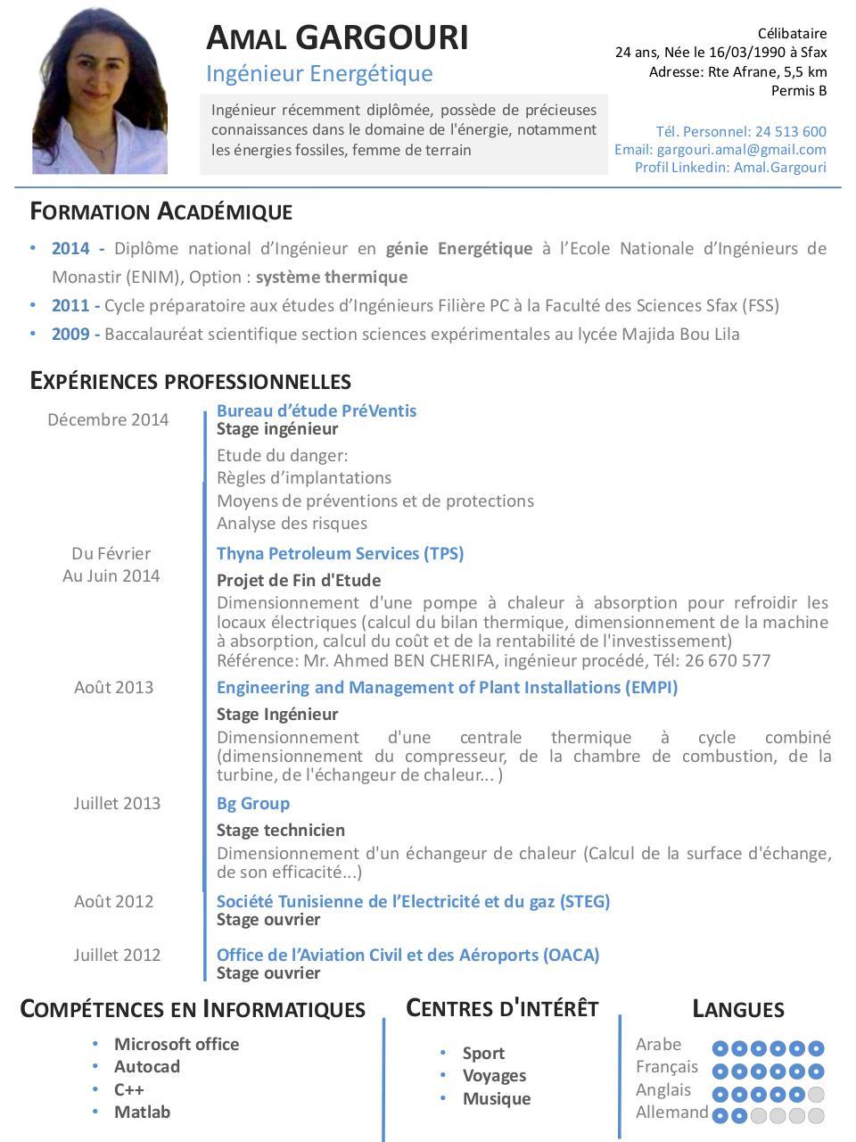 minimalist 1 page resume par zirk