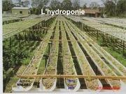 expose hydroponie 2012 2013