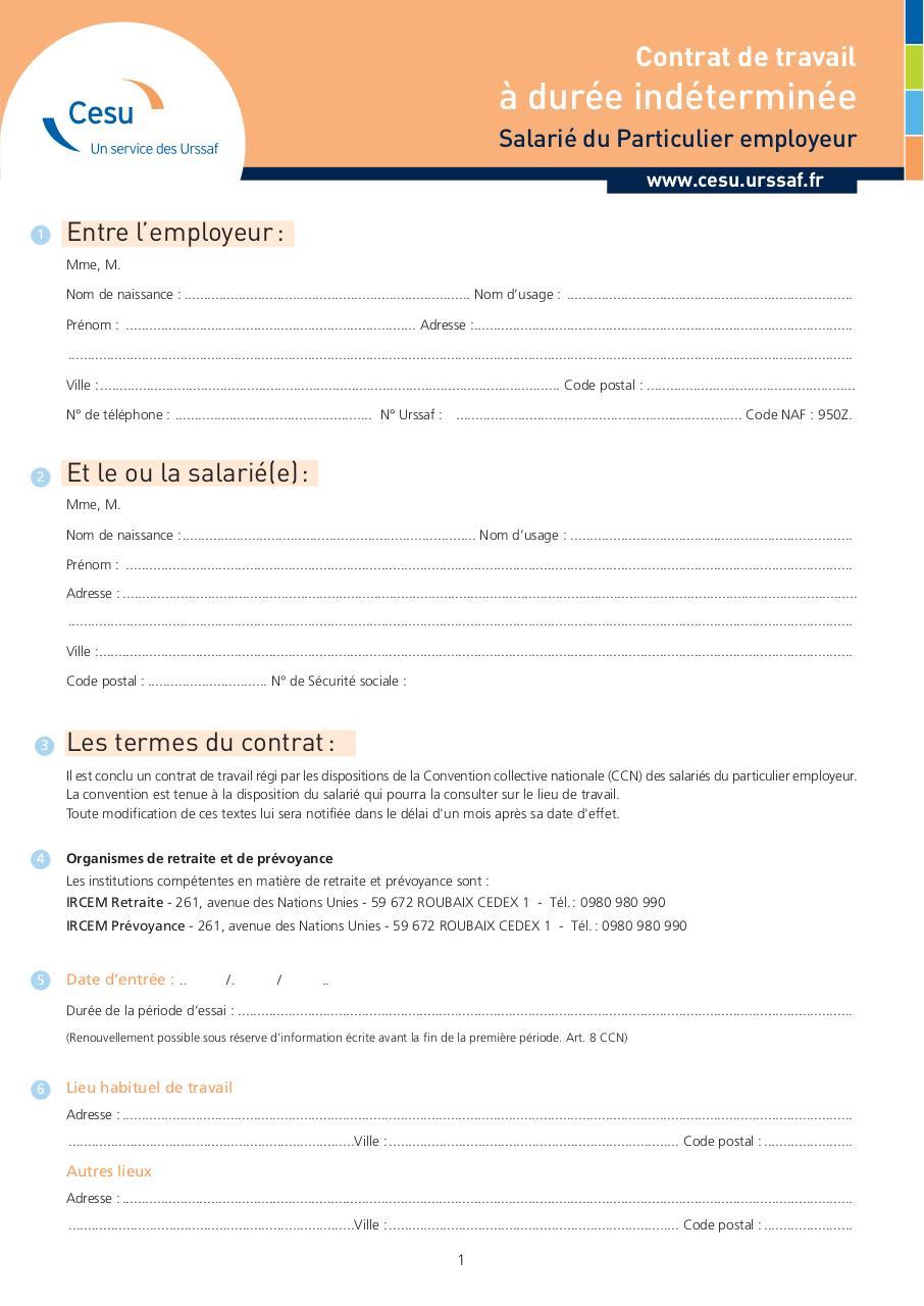CDI cesu par Amelie - Fichier PDF