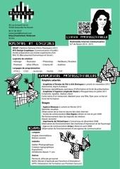 Fichier PDF cv licence pro