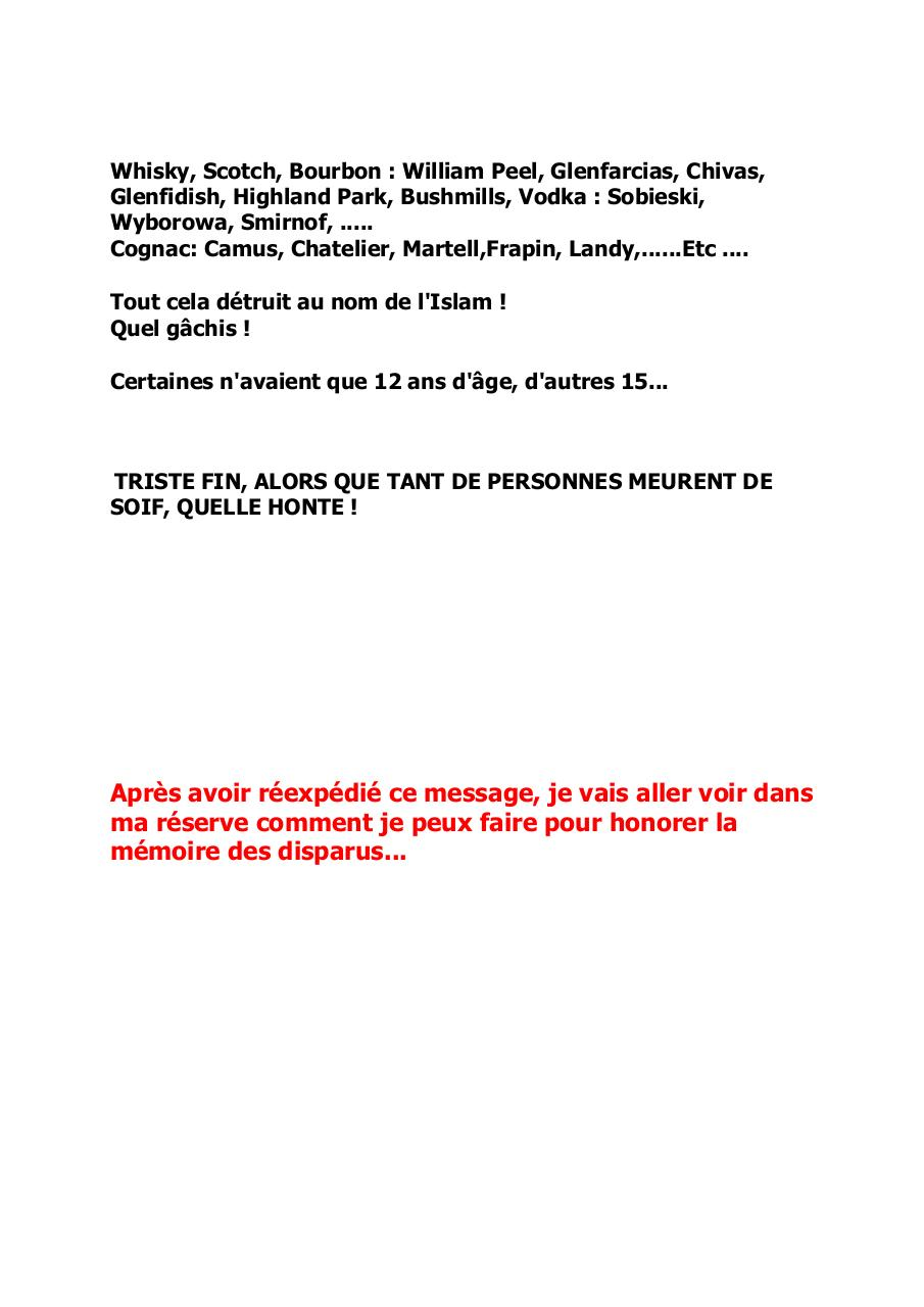 Insoutenable.pdf - page 3/3