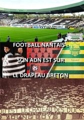 football nantais son adn est sur le drapeau breton