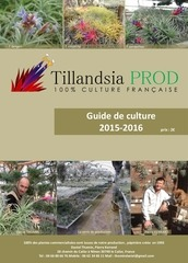 guide de culture tillandsia prod public 2015 2016 2