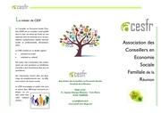 Fichier PDF brochure acesfr
