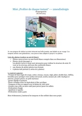 Fichier PDF infos mini crop 2015