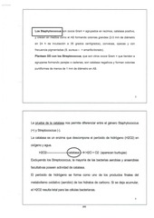 micro pdf