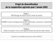 Fichier PDF analyse financiere des projets de diversification