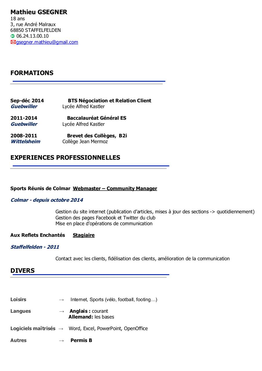 Aperçu du document CV Mathieu 2015.pdf - page 1/1