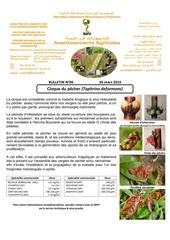 Fichier PDF 06 15 cloque du pecher 26 03