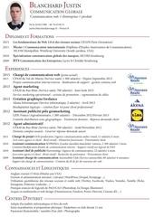 Fichier PDF cv jb 2015