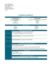 Fichier PDF cv elies