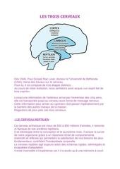 les trois cerveaux