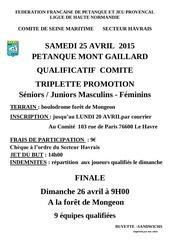 2015 04 25 qualif comite tripl promotion