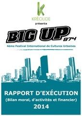 rapport big up 2014