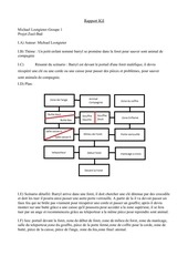 Fichier PDF rapport zull