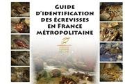 guide d identification des ecrevisses en france metropolitaine 1376296060 1