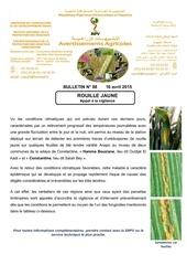 Fichier PDF 16 04 2015 rouille jaunes des cereales nt 08