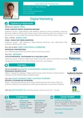 cv alternance digital marketing 2015 2 2