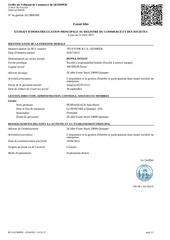 Fichier PDF 793970096 2903 extrait kbis