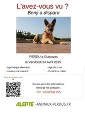 affiches alerte 553c0435627c6