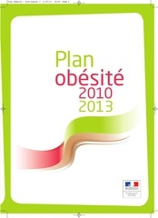 plan obesite 2010 2013 2