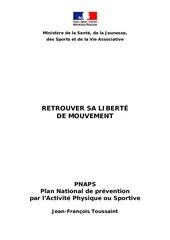 rapport toussaint 2008 prevention ap