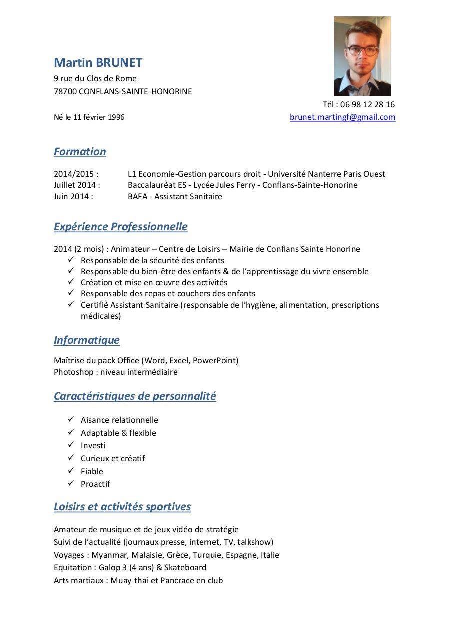 cv mb com pdf par martin brunet