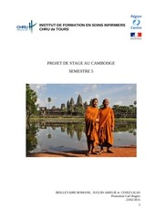 projet stage au cambodge