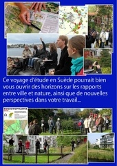 sth2015 pre inscription
